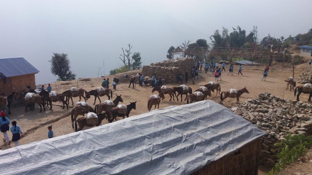 Waku: trasporto del cemento con muli.