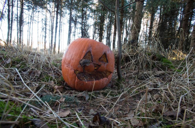 halloweenPumpkin-Doug_Brown