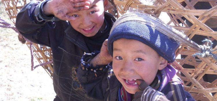 Due bambini cercano un'adozione scolastica